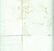 PLA204