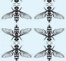 HoneyB090