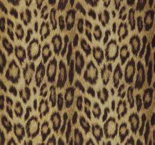 Panthera 08-Gold
