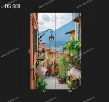 DS-008