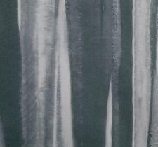 W386-02