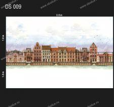 DS-009