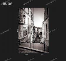 DS-003