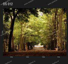 DS-012