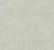 VP69005