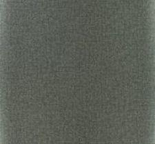 P517/06