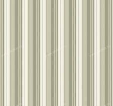axina papyrus 502