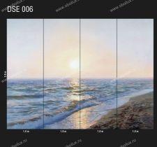 DSE-006