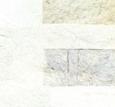 RM91101