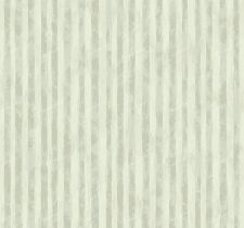 ZN41508