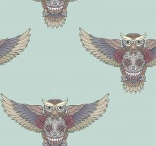Birdsofwisdom011