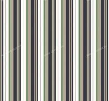 axina green 509