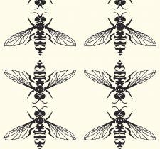 HoneyB050