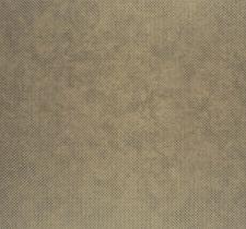 CHR28372236