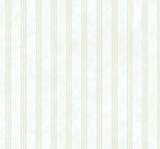 FV62301