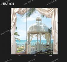 DSE-004