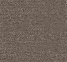 Trend, Jaclyn Smith Home II terracotta cinna, арт.02133 Fudge