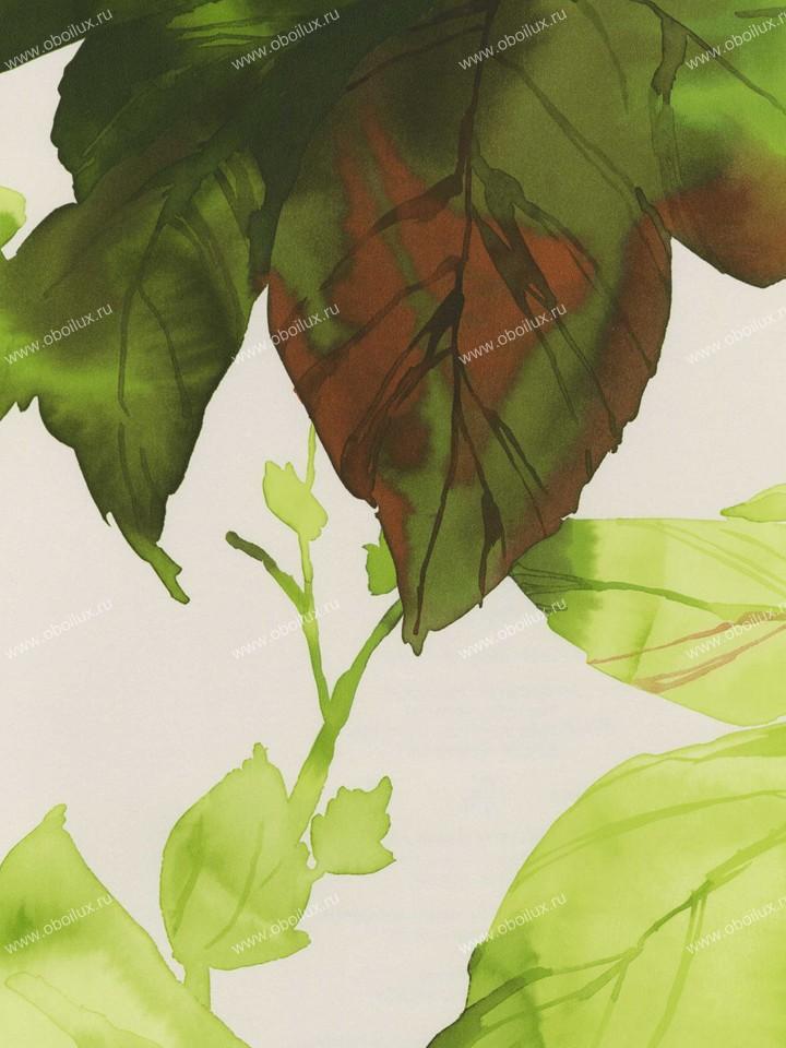 Американские обои Wallquest,  коллекция Villa Flora, артикулVB10300