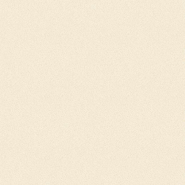 Американские обои York,  коллекция Carey Lind - Jewel Box, артикулLD7656