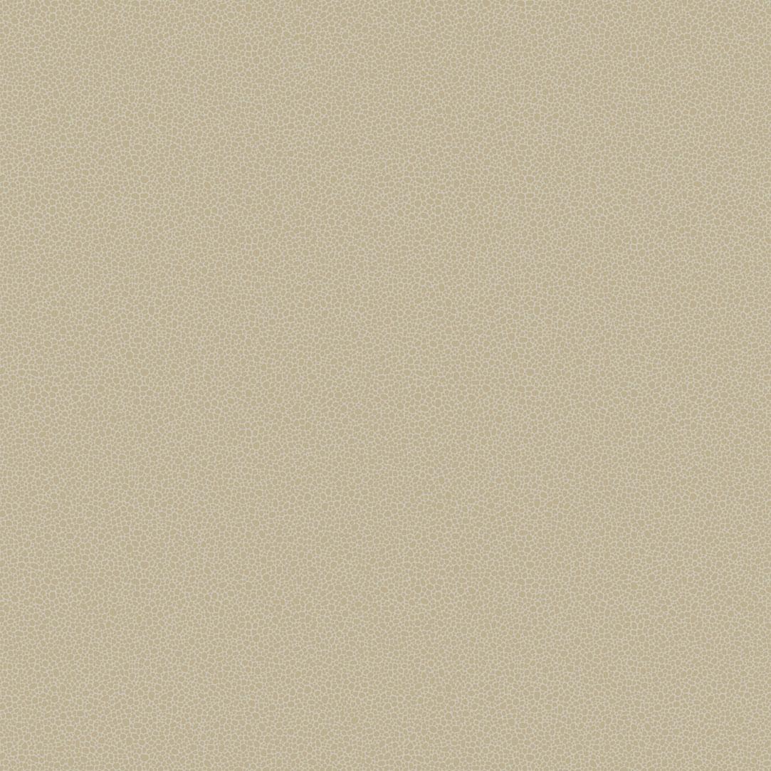 Английские обои Cole & Son,  коллекция Curio, артикул107/9042