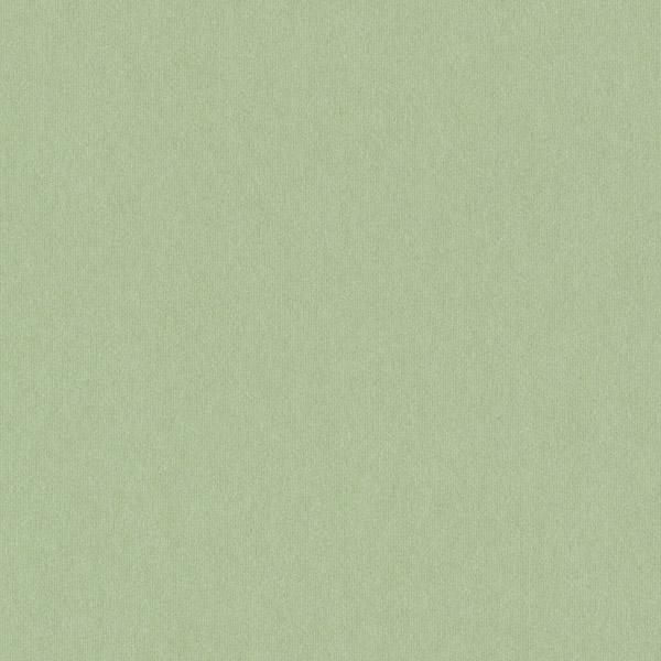 Российские обои Loymina,  коллекция Plein Air, артикулA5005