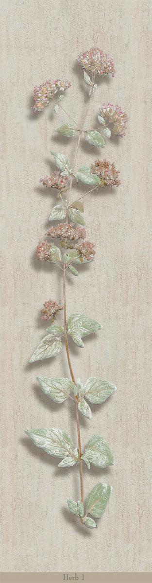 Английские обои Iksel,  коллекция Scenic & Architectural Wallpapers, артикулHerbierHerb1