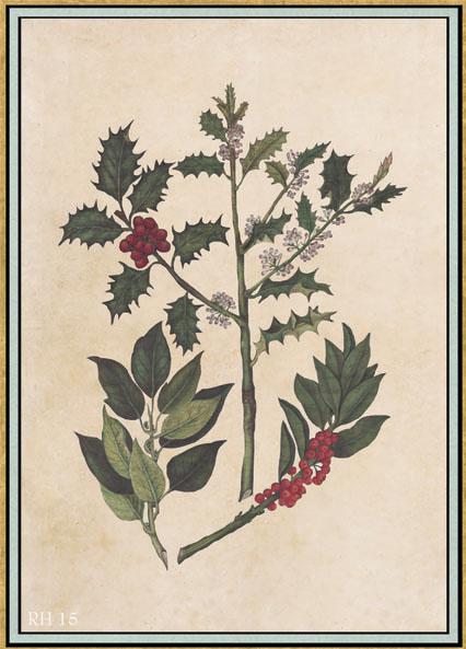 Английские обои Iksel,  коллекция Scenic & Architectural Wallpapers, артикулRenaissanceHerbierRH15