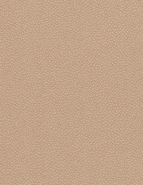 Французские обои Caselio,  коллекция Kaleido 4, артикулKLI5750-12-65