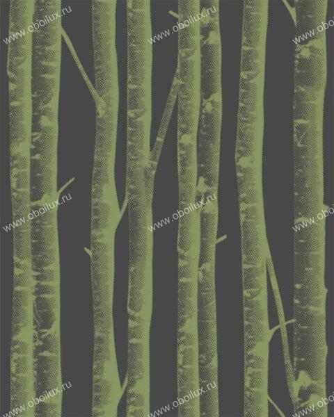 Бельгийские обои Khroma,  коллекция Silence, артикулSIL303