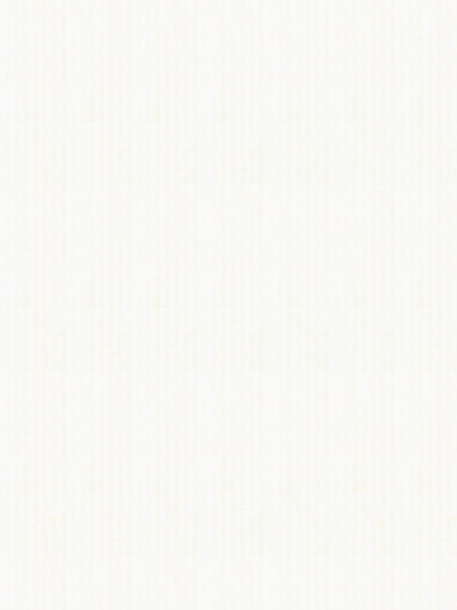 02329 White