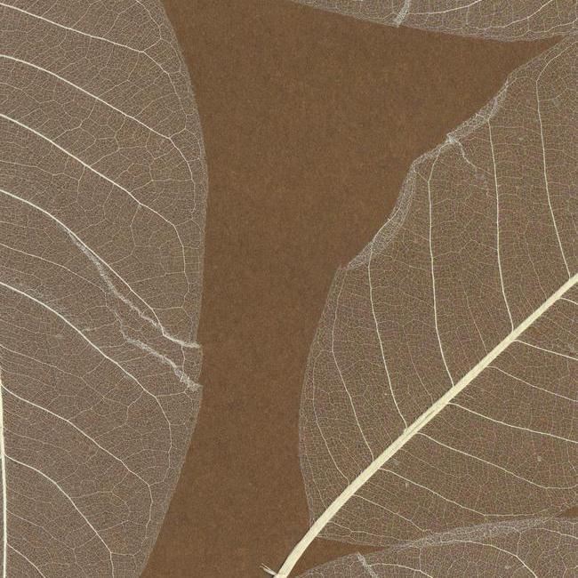 Американские обои York,  коллекция Designer Resource Grasscloth and Natural Wallpaper, артикулSE1801