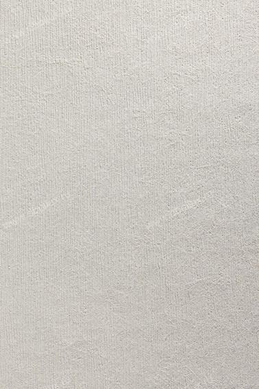 Немецкие обои Architects Paper,  коллекция Omnia, артикул1807-11