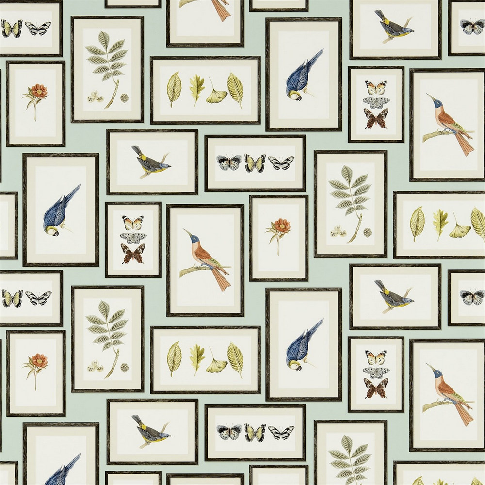 Английские обои Sanderson,  коллекция Voyage of Discovery, артикул213400