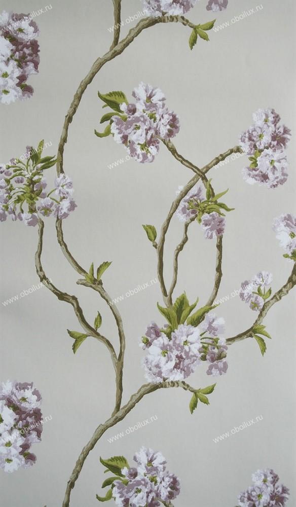 Английские обои Nina Campbell,  коллекция Wallpaper Album III, артикулNCW4027-03