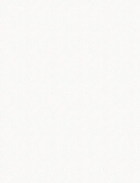 Бельгийские обои Khroma,  коллекция Best of, артикулliriowhite804