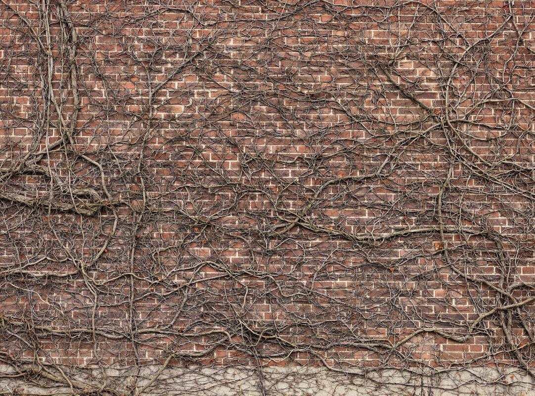 Шведские обои Mr Perswall,  коллекция Captured Reality, артикулE020201-9