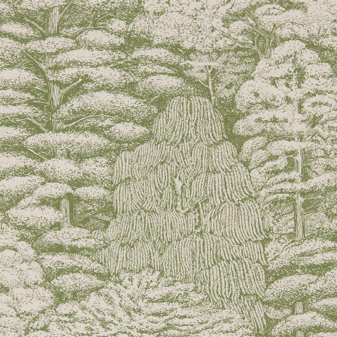 Английские обои Sanderson,  коллекция Woodland Walk, артикул215720