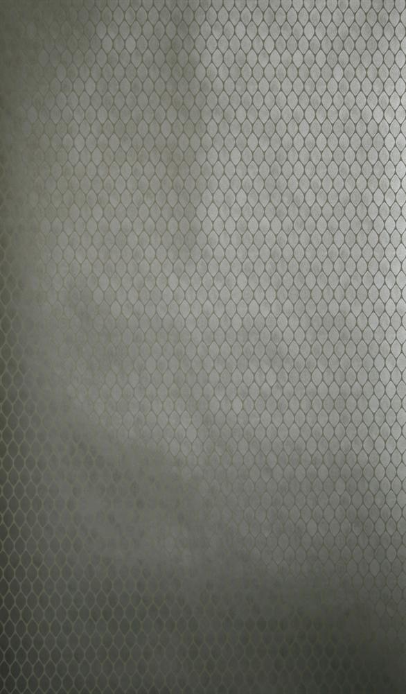Английские обои Nina Campbell,  коллекция Sylvana, артикулNCW4023/02