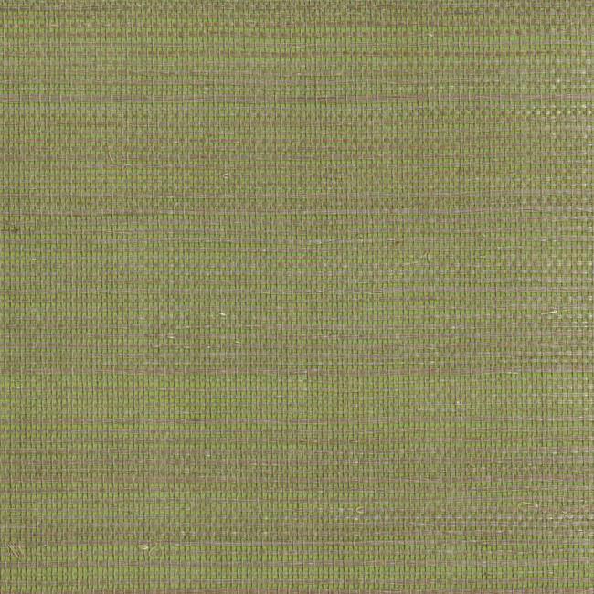 Американские обои York,  коллекция Ashford House - Ashford Tropics, артикулGC0701