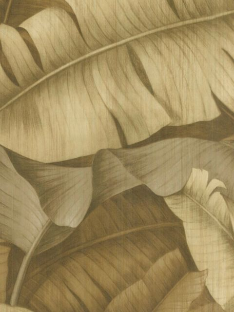 Американские обои Wallquest,  коллекция Sandpiper Studios - New Elegance, артикулSD70509