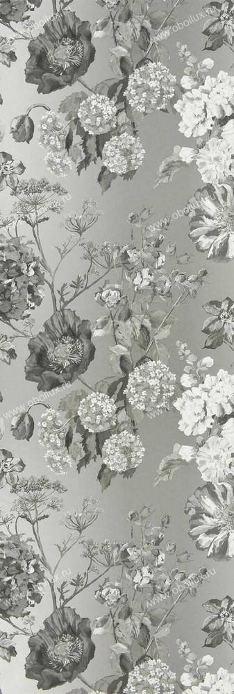 Английские обои Designers guild,  коллекция Alexandria, артикулP623/06