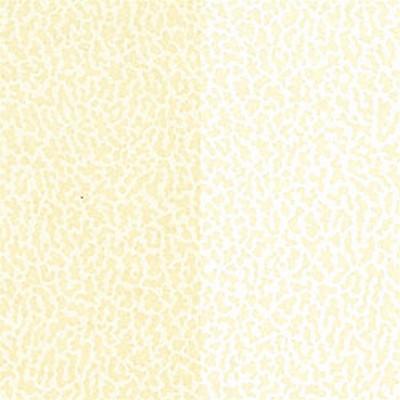 Американские обои Thibaut,  коллекция Stripe Resource IV, артикулT2874