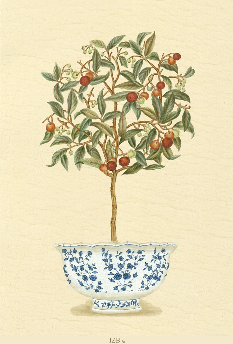 Английские обои Iksel,  коллекция Scenic & Architectural Wallpapers, артикулIznikBonsaisIZB4