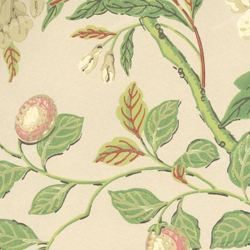 Английские обои GP & J Baker ,  коллекция Emperor`s Garden, артикулBW45000-7