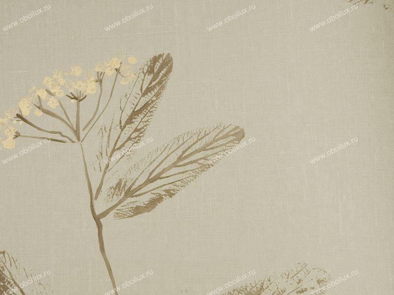 Английские обои Harlequin,  коллекция Arboreta, артикул30280