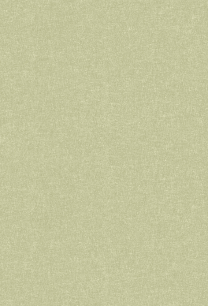 Итальянские обои J Wall,  коллекция 1001 Glance, артикулWJMU0004