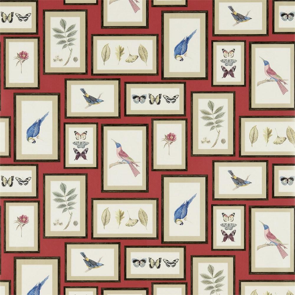 Английские обои Sanderson,  коллекция Voyage of Discovery, артикул213398