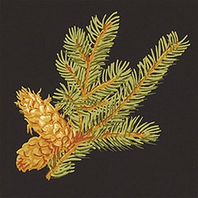 Американские обои Thibaut,  коллекция Castle Pine, артикулT6335
