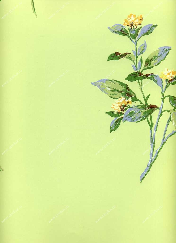Американские обои York,  коллекция Ashford House - Flowers S.E., артикулWU0716