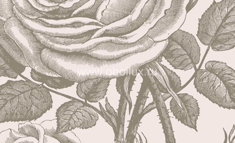 Шведские обои Borastapeter,  коллекция Flora, артикул3330